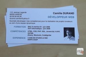 Mini Cv Le Bref Resume Du CV