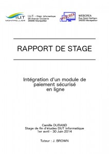 introduction dissertation fin de partie pdf