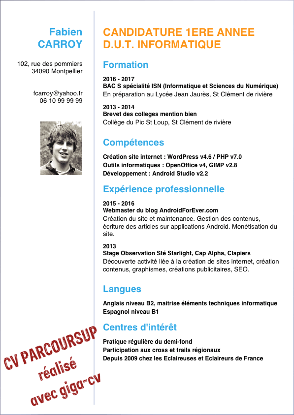 curriculum vitae pour inscription iut